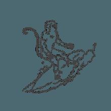 sandlots-loop-img10